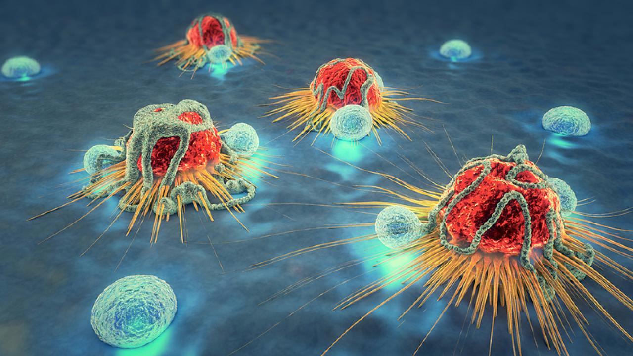 Achtung! Wenn du dich mit diesen vier Keimen ansteckst, droht Krebs – Video