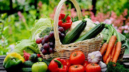 Warum basische Ernährung gesund ist