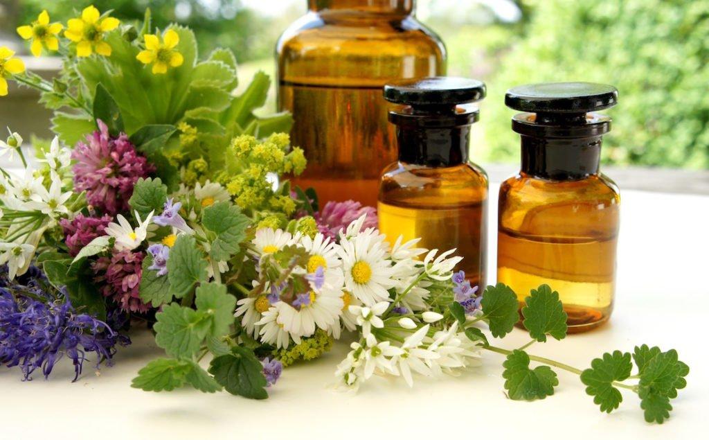 Heilpflanzen als Medizin