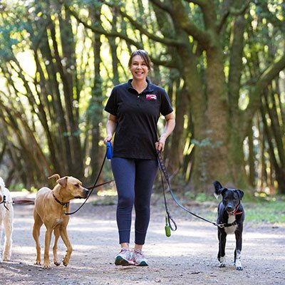 Treffen Robyn Greene: Besitzer Holen! Tierbetreuung von Marin und Sonoma County