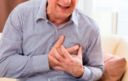Herz-Kreislauf-Erkrankungen: Wichtige Prozesse hinter Gefäßalterung entdeckt