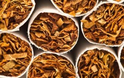 Deutsche rauchenöfter Zigarre