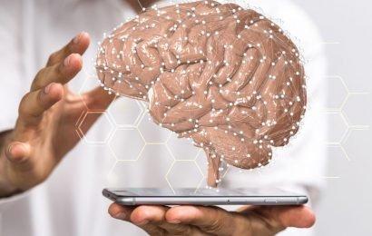 Forschung: Das Geheimnis der Intelligenz konnte jetzt entschlüsselt werden