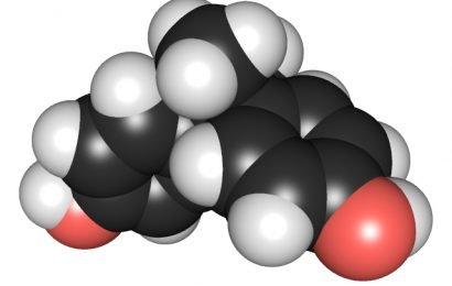 Kann die pränatale Exposition mit BPA Auswirkungen die Funktion der Eierstöcke?