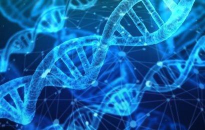 3-D Struktur des proteins zeigt einen neuen Mechanismus für die zukünftige anti-Krebs-Medikamente