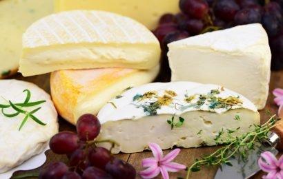 Durchfallrisiko: Aktueller Käse-Rückruf wegen gesundheitsschädlichen Kolibakterien gestartet