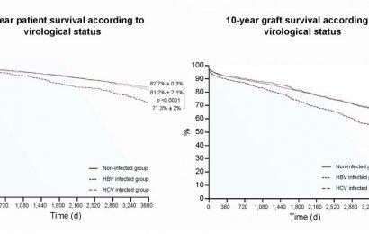 Antivirale Therapie verbessert die überlebensrate bei Nieren-Transplantation Empfänger mit hepatitis B oder C