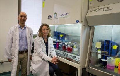 Wissenschaftler sly, verwenden Täuschung, um Krebs zu bekämpfen