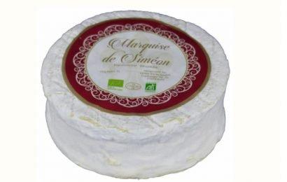Rückruf für Brie-Käse – Gefahr durch Listerien