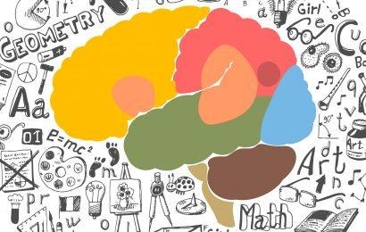 Forschung Regeln, Exekutive-Funktion-Vorteil für einige zweisprachige Kinder