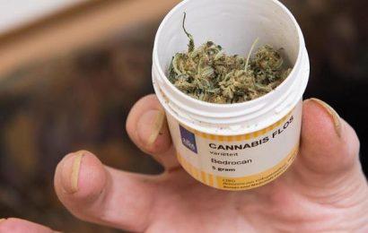 Cannabis auf Rezept: Krankenkassen zweifeln an Marihuana-Therapie