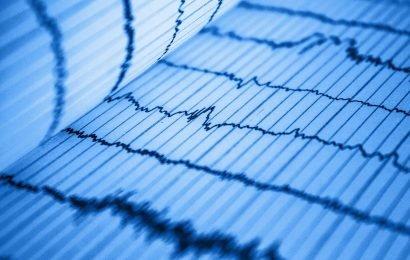 Neue Einblicke in das Herz-Kreislauf-Erkrankungen aus der Evolutionsbiologie