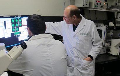 Entdeckung des Mechanismus hinter Präzision Krebs-Medikament öffnet die Tür für weitere gezielte Behandlung