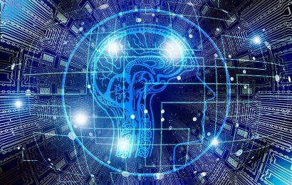 Research identifiziert neue Wege für das sensorische lernen im Gehirn