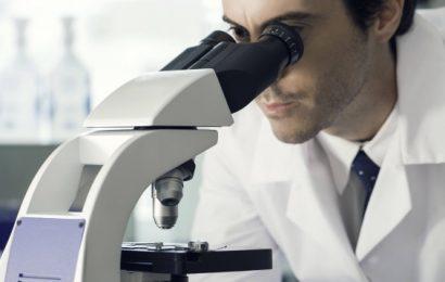 Biosynthese in Hydrogelen statt in lebenden Zellen