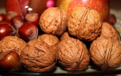Steigerung der tägliche Verzehr von Nüssen verbunden mit weniger Gewichtszunahme und niedriger das Risiko der Fettleibigkeit