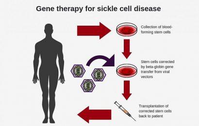 Forscher erstellen neue virale Vektor für verbesserte gen-Therapie bei Patienten mit Sichelzellanämie