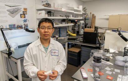 Blut-Sammlung-Gerät macht-Strahlung-Prüfung schnell und einfach