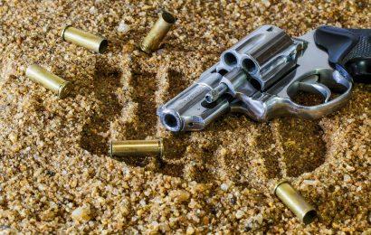 Viertel der kalifornischen Erwachsenen Leben in einem Haushalt mit einem Gewehr Umfrage zeigt