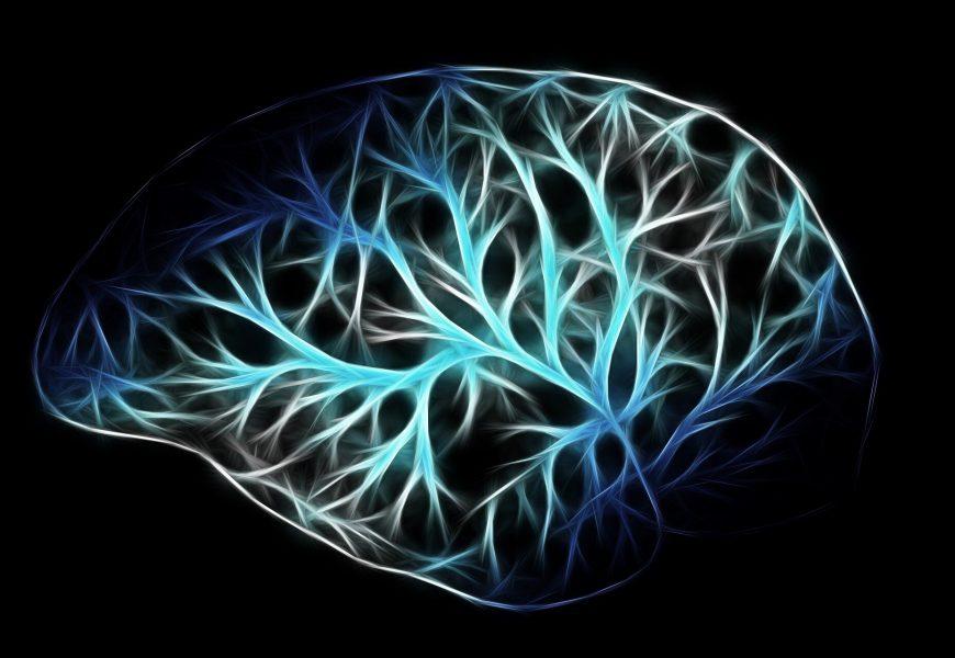 Demenz-Studie zeigt, wie Proteine interagieren zu stoppen Gehirn Signale