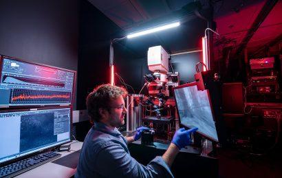 Visuelle Neuronen nicht so funktioniert wie Sie dachten Wissenschaftler, Studie findet