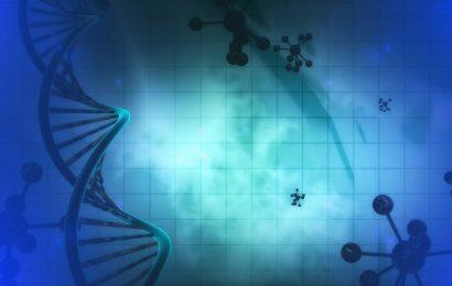 """Algorithmen für die Identifizierung neuer """"Krebs-Gene"""""""