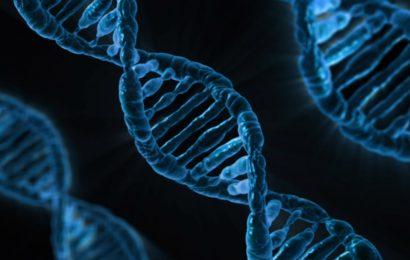 Neue gen-mutation, die im Zusammenhang mit Fabry-Kardiomyopathie