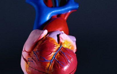 AI-imaging-Analyse prognostischer in der koronaren Herzkrankheit