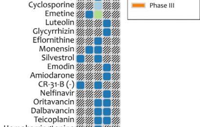 Vorhandene Drogen können bieten eine first-line-Behandlung für Corona-Virus-Ausbruch