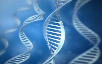 At-home gen-test für Brustkrebs, Eierstockkrebs wirksam sieht