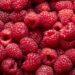 Protein-Bedarf: Wie viel Eiweiß braucht der Körper? – Naturheilkunde & Naturheilverfahren Fachportal