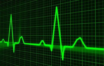 Gehirn die Empfindlichkeit auf sensorische Reize hängt von der Herz-Kreislauf und das Gehirn ist in der Wahrnehmung des