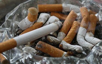 Die Todesrate dramatisch weniger für junge Herzinfarkt überlebenden, die aufhören zu Rauchen