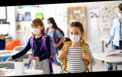 Coronavirus: Deutlich mehr Infektionen bei Kindern als bekannt – Heilpraxis
